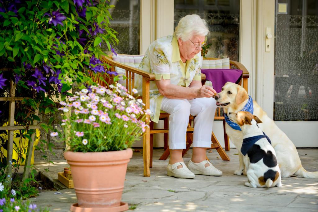 Auch Tiere spielen eine große Rolle in der Altenpflege.